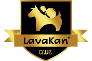 club lavakan logo or(1)